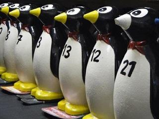Pinguine_Preis